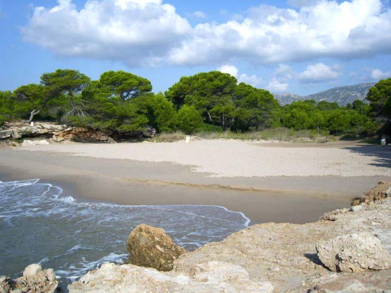 Port Olivet (a 1,5 km)