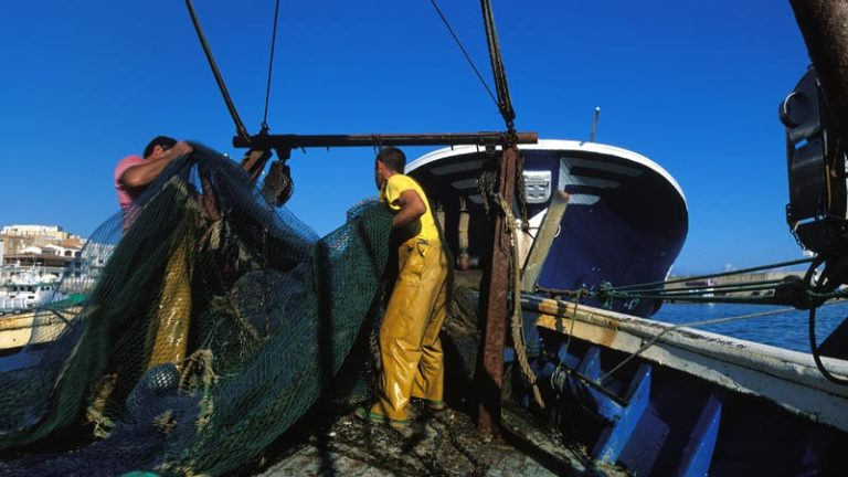 Pescadors-ametlla